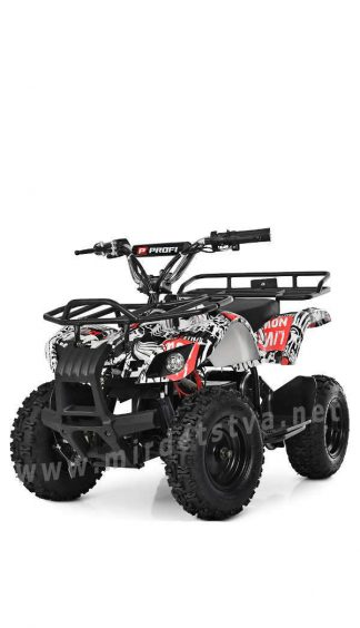 Детский электрический квадроцикл Profi HB-EATV800N New4 V2