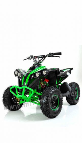 Квадроцикл на аккумуляторах Profi HB-EATV1000Q