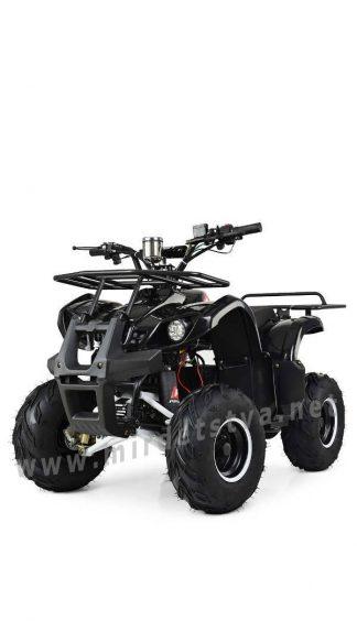Мощный подростковый квадроцикл Profi HB-EATV1000D-2 (MP3)