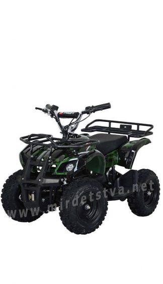 Подростковый квадроцикл Profi HB-EATV800N-10 V2