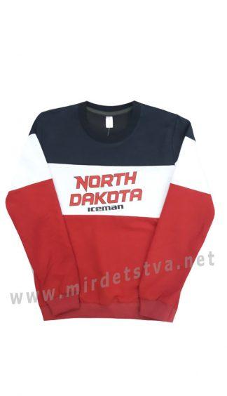 Подростковый свитшот Iceman 2001 North Dakota
