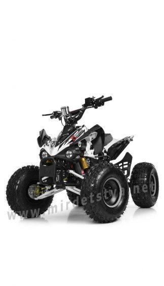 Квадроцикл для подростка Profi HB-EATV1000Q2-1(MP3)