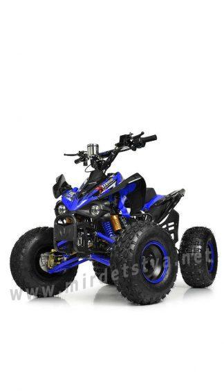 Квадроцикл с мотором Profi HB-EATV1000Q2-4(MP3)