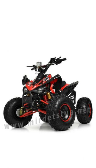 Квадроцикл с мотором для подростка Profi HB-EATV1000Q2-3(MP3)